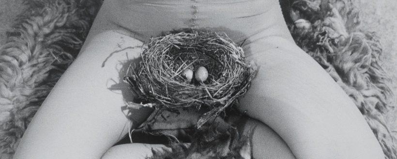 birgit jurgenssen - nest - le bastart
